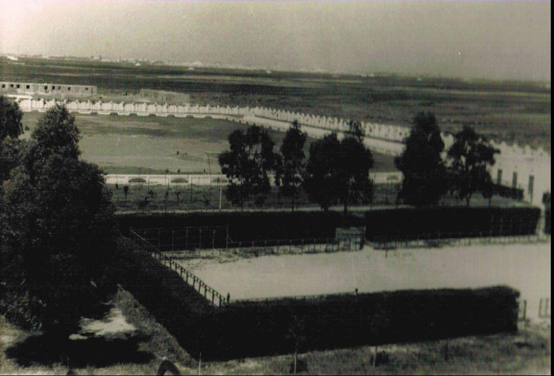 Campo Municipal de Deportes