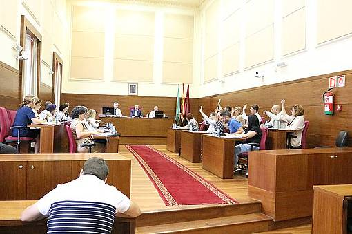 Momento de la celebración del Pleno